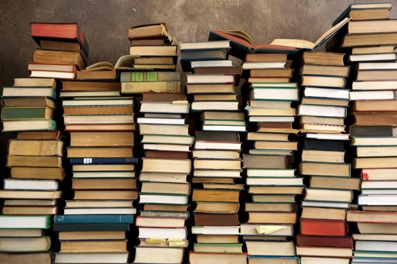 Mille libri in dono alla scuola