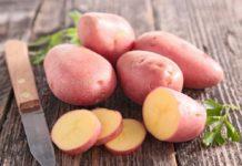 Torna a Colfiorito la sagra della patata rossa, dal 10 al 19 agosto
