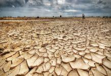 """Coldiretti: """"In Umbria -82% di pioggia"""""""