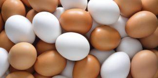 Uova contaminate: il vertice in Regione