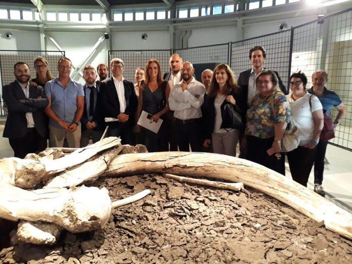 Museo Paleontologico, Bergonzoni: