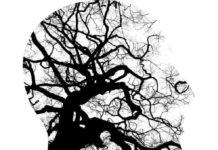 Salute mentale a lavoro: i pazienti del Csm diventano abili tessitori